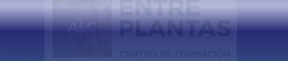 Nuevos grupos online de auxiliar administrativo CARM